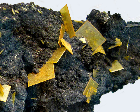 Wulfenite on Mottramite, 79 Mine, Gila Co., AZ